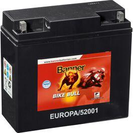 Batterie Bike Bull GEL